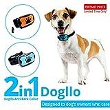 Dogllo Antibell-Halsband gegen Bellen