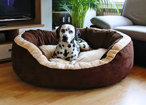 Knuffelwuff Heaven Hundesofa